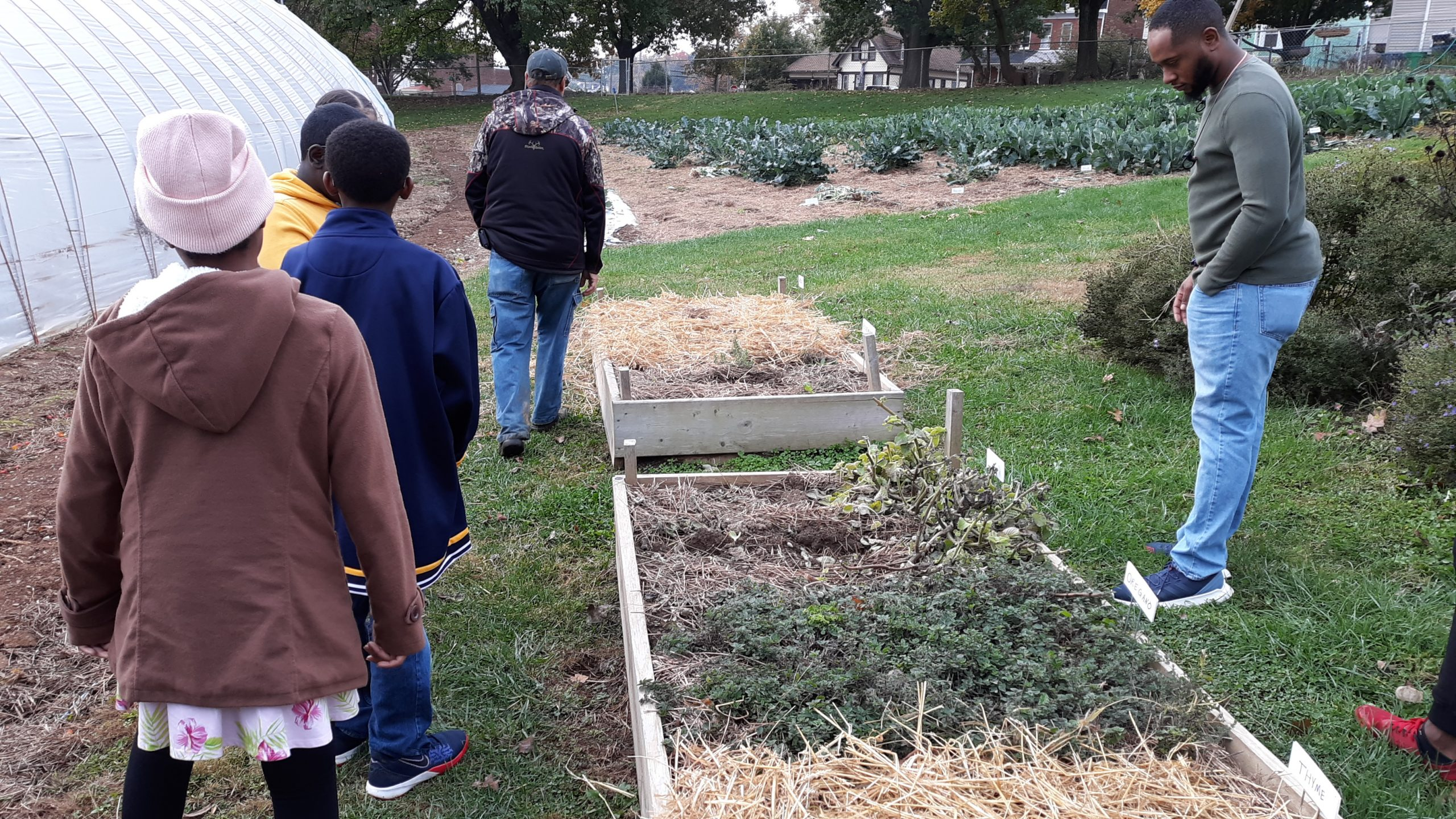 Learning about community farming
